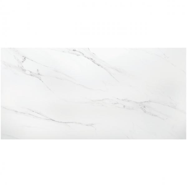 Polo Carrara Brillo 60x120