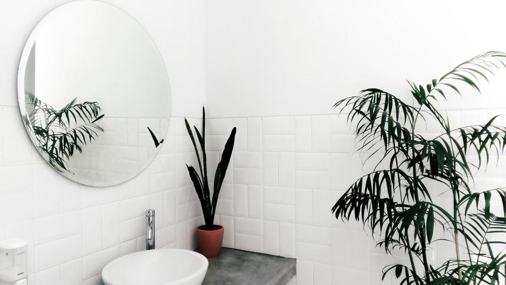 Μπάνιο και φυτά